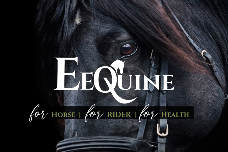 eequine horse and human health banner
